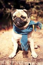 Fawn Colored Pug in a Blue Scarf Dog Journal