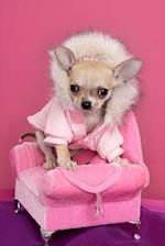 Fashionable Chihuahua in Pink Dog Journal