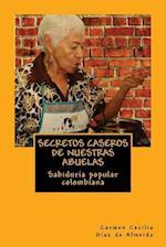 Secretos Caseros de Nuestras Abuelas af Carmen Cecilia Diaz De Almeida