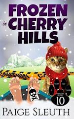 Frozen in Cherry Hills