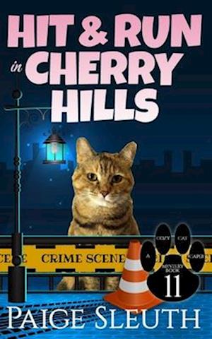 Bog, paperback Hit and Run in Cherry Hills af Paige Sleuth