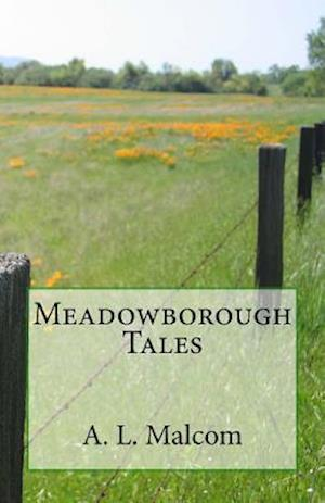 Bog, paperback Meadowborough Tales af A. L. Malcom
