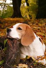 A Beagle Taking a Short Rest in an Autumn Forest Journal