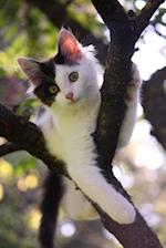 Cute Black and White Kitten in a Tree Journal