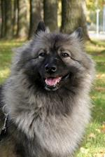 Keeshond Dog in the Park Journal