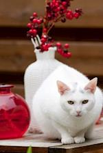 Pretty White Cat on a Table Journal
