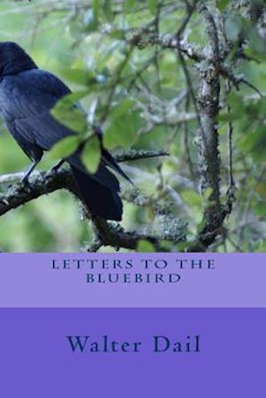 Bog, paperback Letters to the Bluebird af Walter Lee Dail