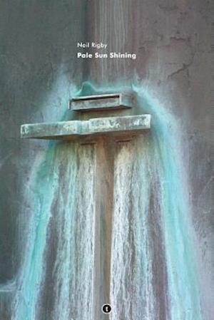 Bog, paperback Pale Sun Shining af Neil Rigby