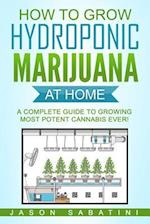 How to Grow Hydroponic Marijuana at Home