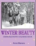 Winter Beauty Grayscale Photo Coloring Book