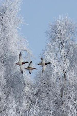 Bog, paperback Anas Platyrhynchos Mallard Ducks Flying in the Winter af Unique Journal