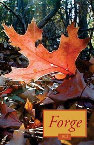 Bog, paperback Forge 10.2 af Forge