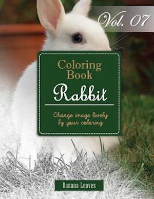 Bog, paperback White Rabbits af Banana Leaves