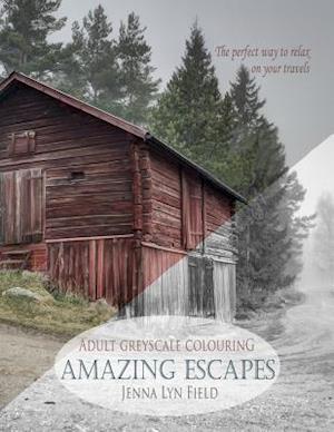 Bog, paperback Amazing Escapes af Jenna Lyn Field