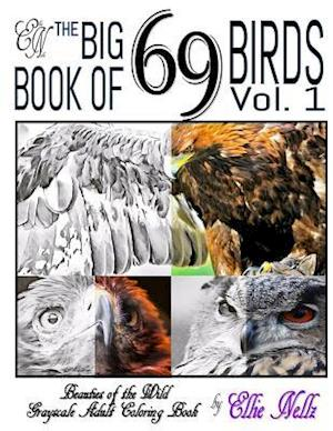 Bog, paperback The Big Book of 69 Birds af Ellie Nellz