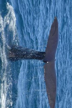 Bog, paperback The Fluke or Tail of a Sperm Whale af Unique Journal