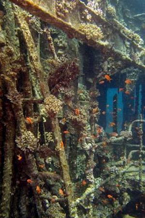 Bog, paperback Detail of Chrisola K Wreck at Red Sea Abu Nuhas Reef Journal af Cool Image