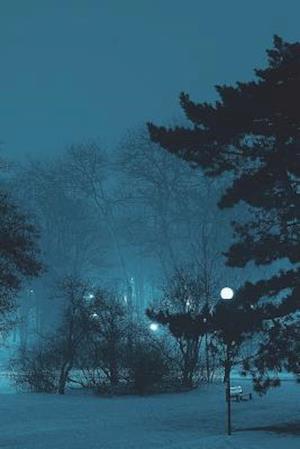 Bog, paperback Frozen Night Park Journal af Cool Image