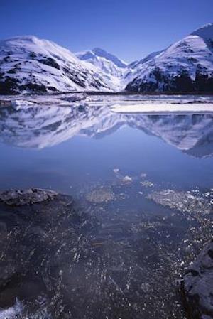 Bog, paperback Portage Lake Alaska in Early Summer Journal af Cool Image