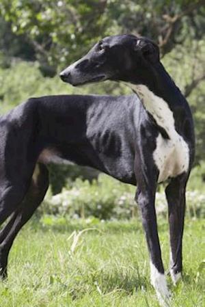 Bog, paperback Greyhound af Artified Pets