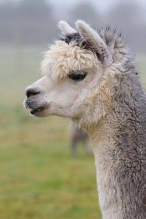 Bog, paperback Totally Adorable Alpaca in Profile Journal af Cs Creations