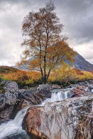 Bog, paperback Bauchiaue Etive Mor, Glen Etive Scotland Journal af Cs Creations