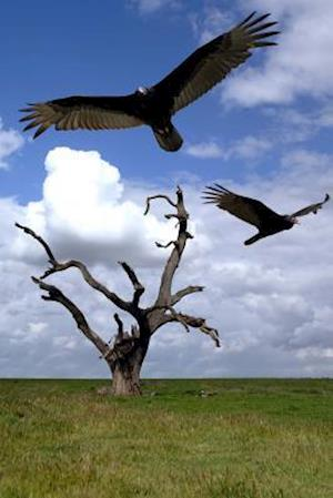 Bog, paperback Buzzards Over a Hanging Tree Journal af Cool Image