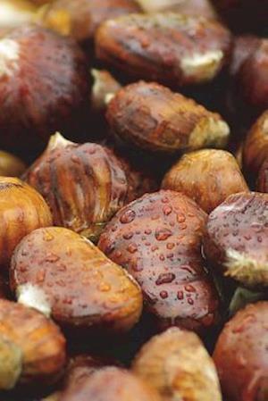 Bog, paperback Chestnuts Journal af Cool Image
