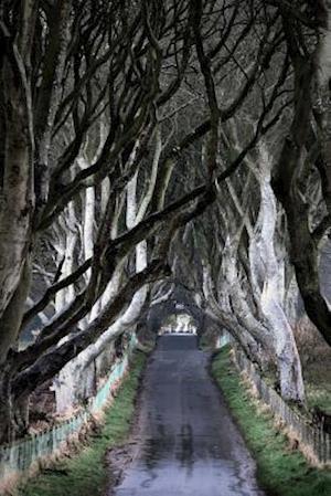 Bog, paperback The Dark Hedges Northern Ireland Journal af Cs Creations