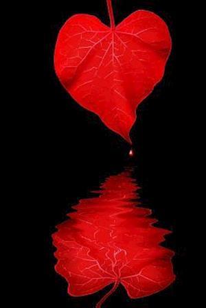 Bog, paperback Heart Makes Waves Morning Glory Leaf Journal af Cool Image