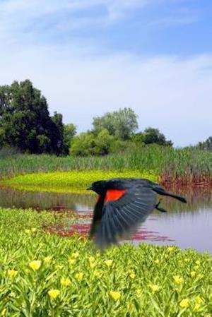 Bog, paperback Red Wing Blackbird in Flight Journal af Cool Image