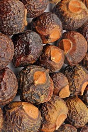 Bog, paperback Soap Nuts Journal af Cool Image