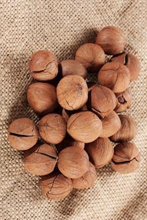 Bog, paperback Wild Hickory Nuts Journal af Cool Image