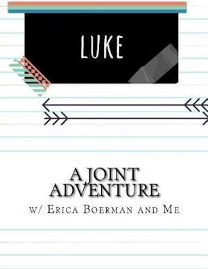 Bog, paperback A Joint Adventure in Luke af Erica Boerman