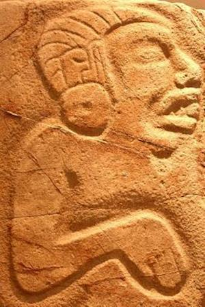 Bog, paperback Carving in Monte Alban Near Oaxaca Mexico Journal af Cool Image