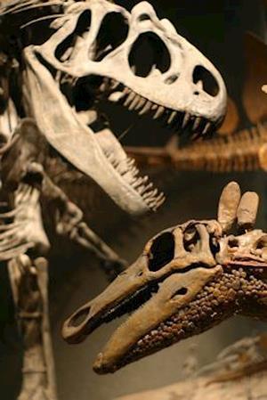 Bog, paperback T-Rex and Stegosaurus Dinosaur Skeletons Face Off Journal af Cool Image