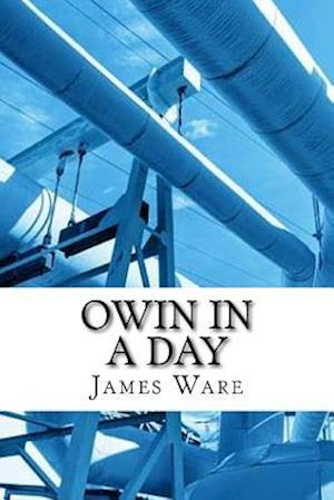 Bog, paperback Owin in a Day af James Ware