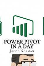 Power Pivot in a Day