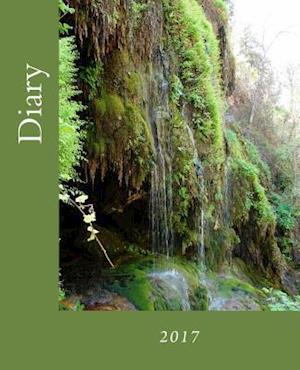 Bog, paperback Diary af Julia Kossowska