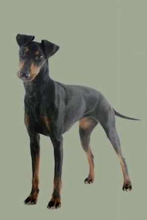 Bog, paperback Manchester Terrier af Artified Pets