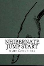 Nhibernate Jump Start af Amie Schneider