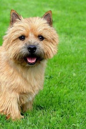 Bog, paperback Norwich Terrier af Artified Pets