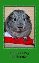 A Guinea Pig Christmas