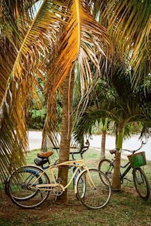 Bog, paperback Bicycles Under the Palm Trees Journal af Cs Creations