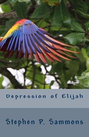 Bog, paperback Depression of Elijah af Stephen P. Sammons