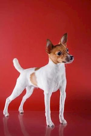 Bog, paperback Toy Fox Terrier af Artified Pets