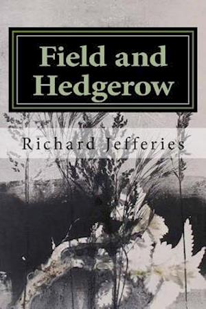 Bog, paperback Field and Hedgerow af Richard Jefferies