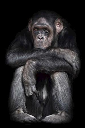 Bog, paperback Serious Common Chimpanzee (Pan Troglodytes) Journal af Cs Creations