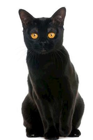Bog, paperback Curious Little Black Bombay Cat Journal af Cs Creations