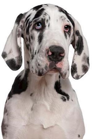 Bog, paperback Darling Great Dane Dog Journal af Cs Creations